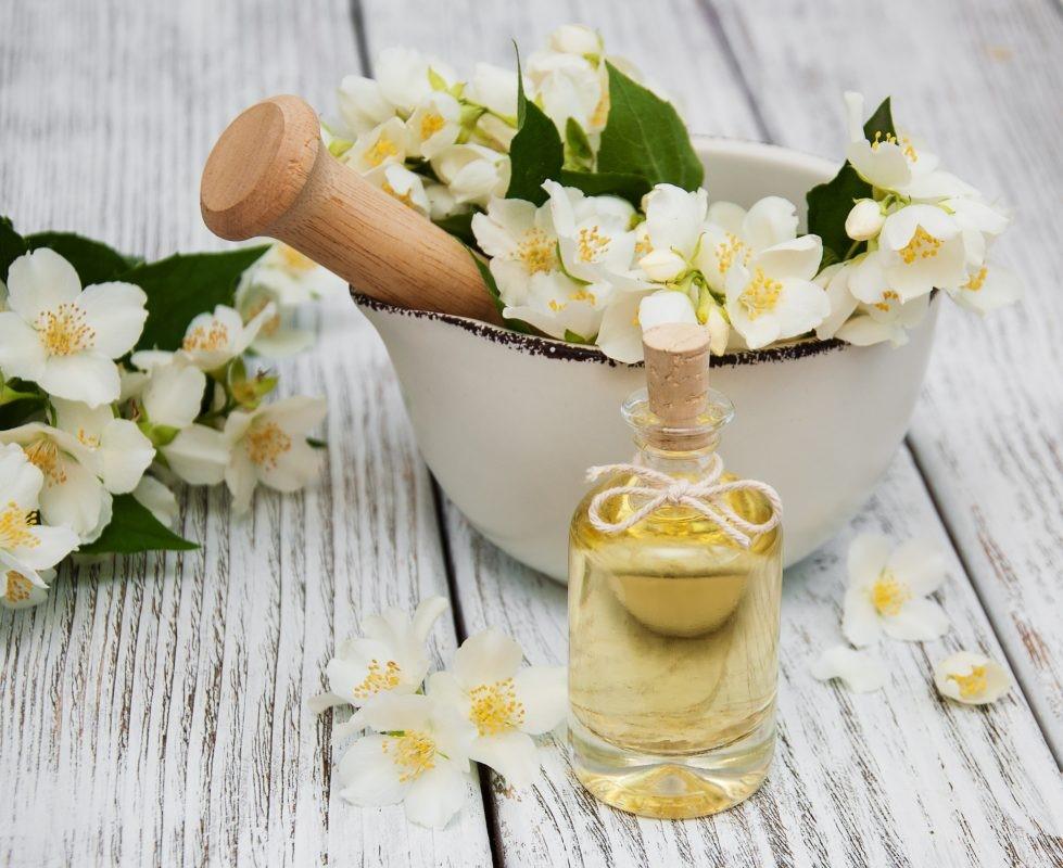 Tinh dầu hoa nhài thơm ngọt có lợi đối với sức khỏe