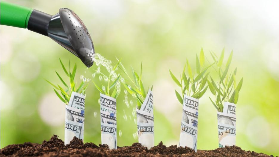 3 cách kiếm tiền - Dùng tiền kiếm tiền